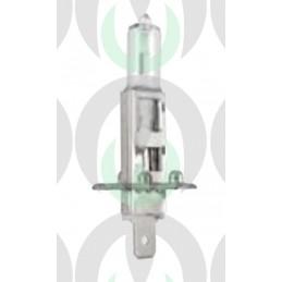 Lampadina 12V - 55W H1 Alogena