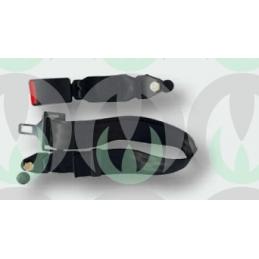 Cintura Addominale