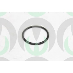 R151701 - Anello O-ring