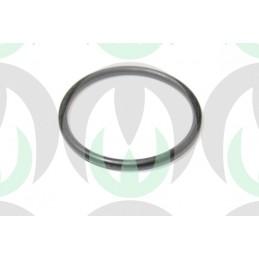 L55595 - Anello O-ring