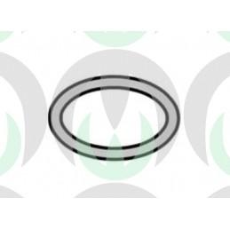 Guarniozione O-Ring